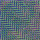 animal collective - <br /><em>Merriweather Post Pavilion</em>