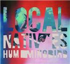 Local Natives<br/> <i>Hummingbird</i>
