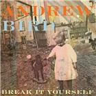 Andrew Bird <br/><i>Break It Yourself</i>