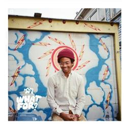 Toro Y Moi <i>What For?</i>