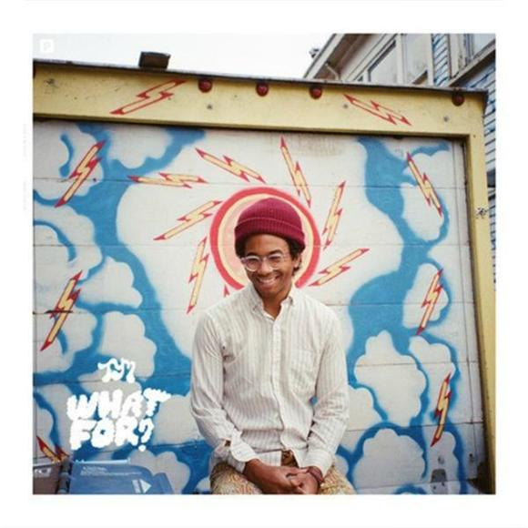 Toro Y Moi What For?