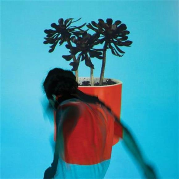 SONG OF THE DAY: Local Natives