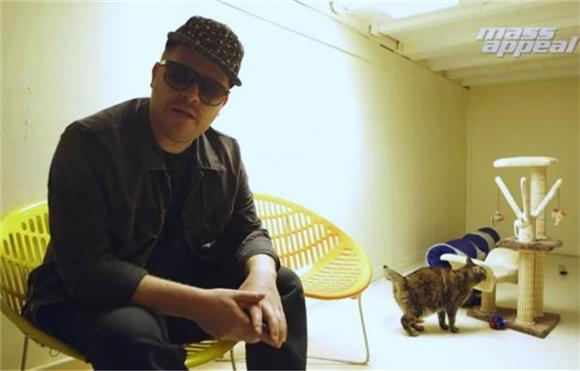 El-P Auditions Cats For Meow The Jewels