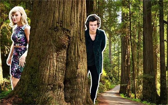 Harry Styles Responds To 'Out of the Woods'