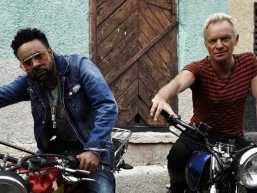 Find Your True Love in Time For V-Day With Sting and Shaggy's New Video