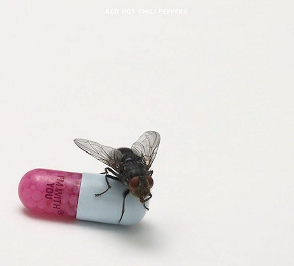 MP3: Red Hot Chili Peppers