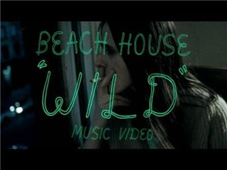 bees-review-beach-house-teen
