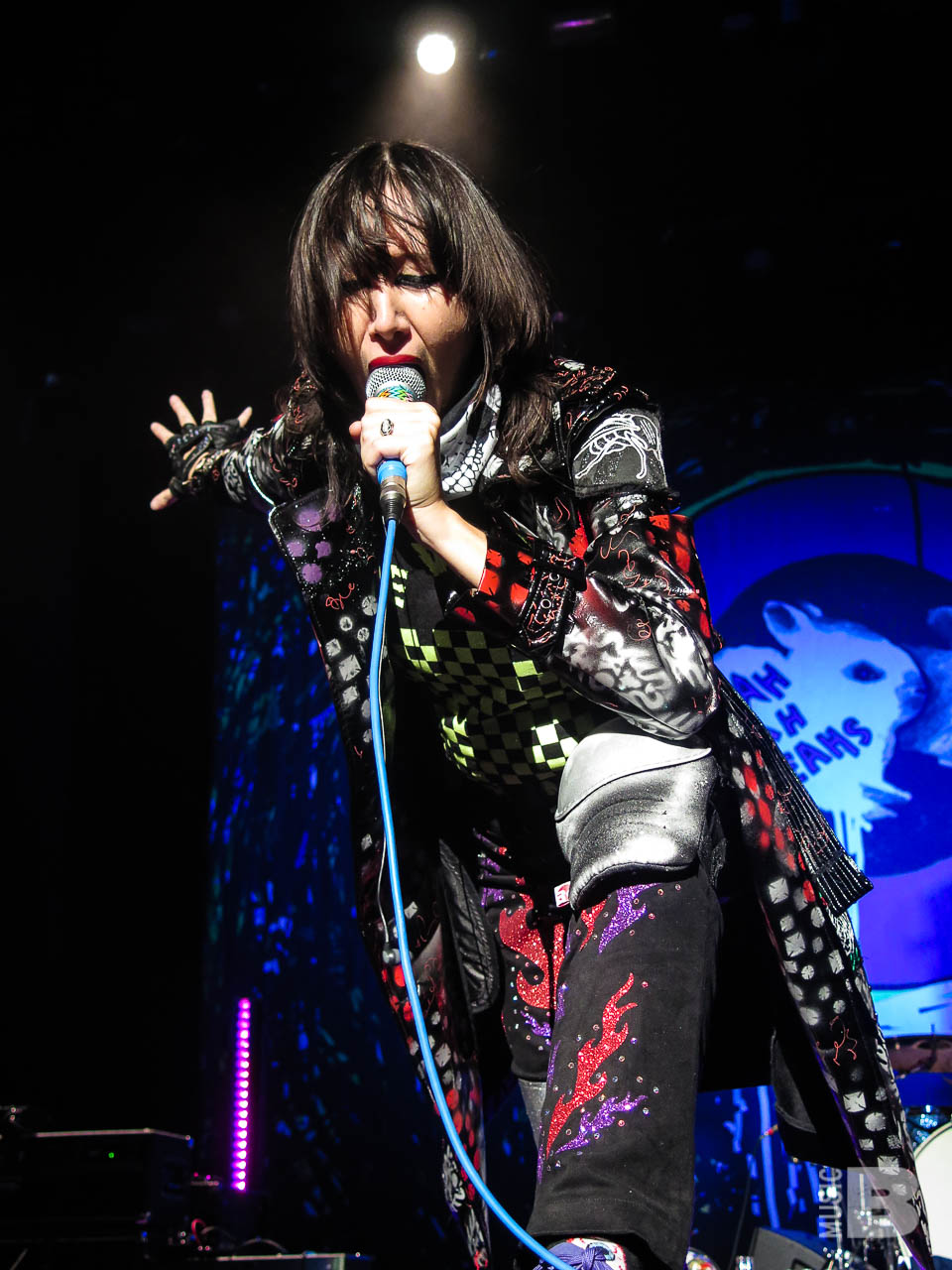 Yeah Yeah Yeahs - Kings Theatre